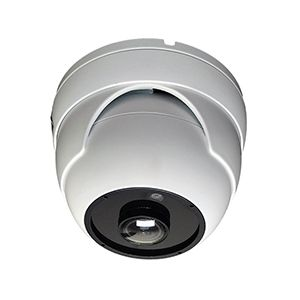 Fish-Eye Camera Security Dome