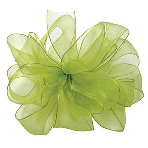 Lime, Wired Encore Ribbon