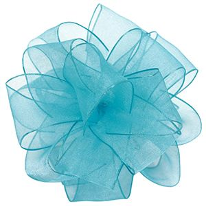 Turquoise, Wired Encore Ribbon