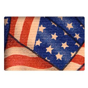 Everyday Gift Enclosure Card, Americana