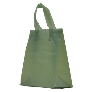 """Sage Frosted Shoppers with Loop Handles, 8"""" x 5"""" x 10"""" x 5"""""""