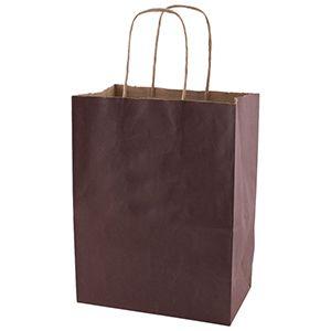 "Espresso, Medium Recycled Paper Shopping Bags, 8"" x 4-3/4"" x 10-1/2"" (Cub)"