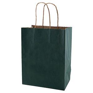 "Evergreen, Medium Recycled Paper Shopping Bags, 8"" x 4-3/4"" x 10-1/2"" (Cub)"