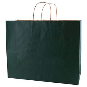 """Evergreen, Large Recycled Paper Shopping Bags, 16"""" x 6"""" x 13"""" (Vogue)"""