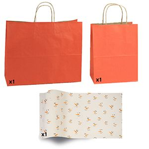 Tera cotta Shadow Stripe Bags and Printed Tissue Paper
