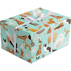 Best in Show, Everyday Gift Wrap