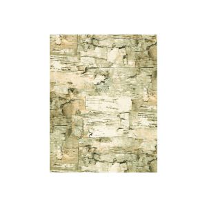Paper Birch, Masculine Gift Wrap