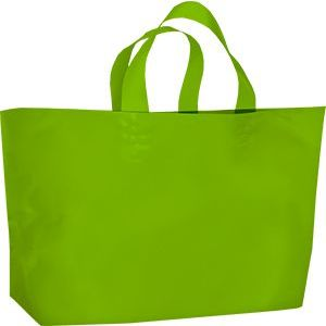 """Lunch Tote Bag, 12"""" x 10"""" + 4"""""""