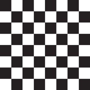 Checks Pattern, Food Service Tissue Paper