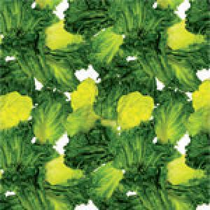Go Green Pattern, Food Service Tissue Paper