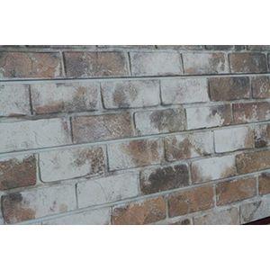 3D Textured Slatwall, Old Paint Brick Sandstone, 2' x 4'