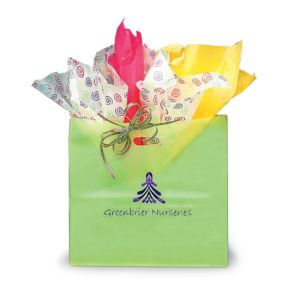 Lime, Large Frosted SOS Gift Bags